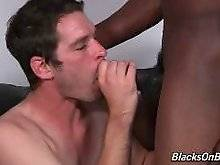 Steel's constant search for fresh white meat brings us to another amazing update. Keith Cook and Steel